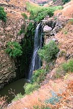 [ Golan waterfall ]