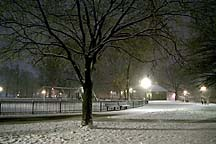 [ Nighttime snowstorm at Federal Hill Park, Baltimore ]